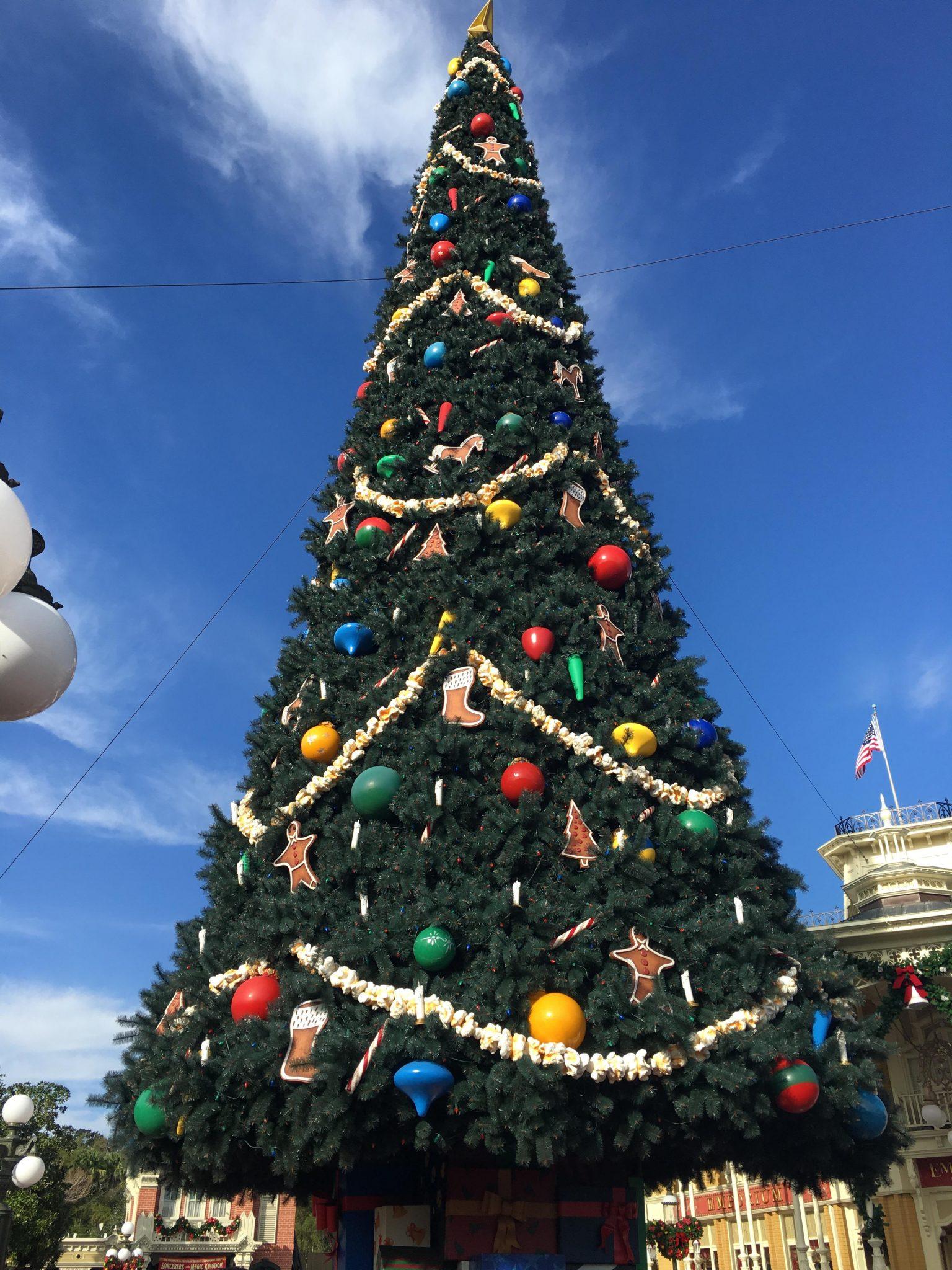 Disney World Holiday Resorts Tour Love Of The Magic