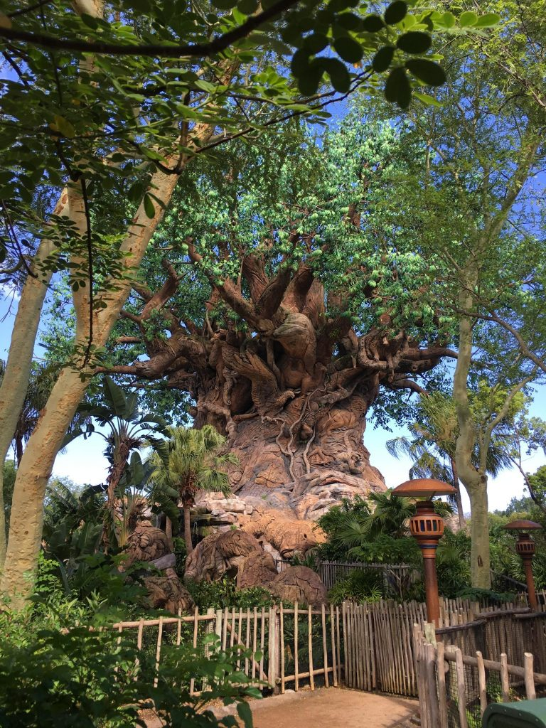 Tree of Life up close at Disney's Animal Kingdom