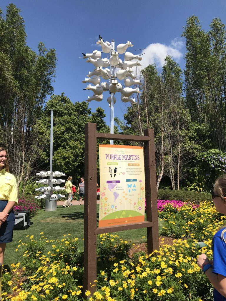 Purple Martins Garden at Epcot Flower and Garden Festival