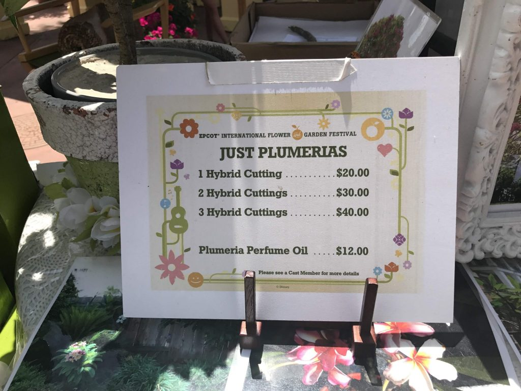 Just Plumerias cost sign at Epcot Flower and Garden Festival