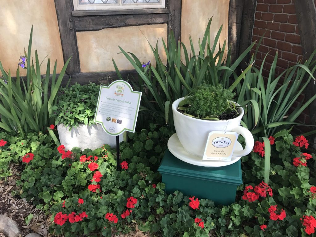 English Tea Garden at the Epcot Flower and Garden Festival