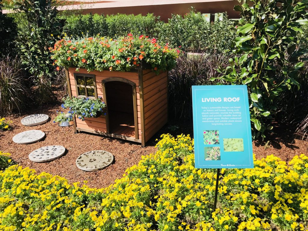 Living Roof at the How to Garden Epcot Flower and Garden Festival