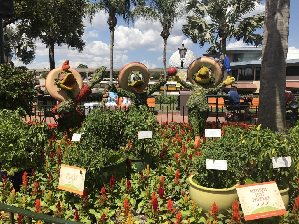 Hot Pepper Garden at Epcot Flower and Garden Festival