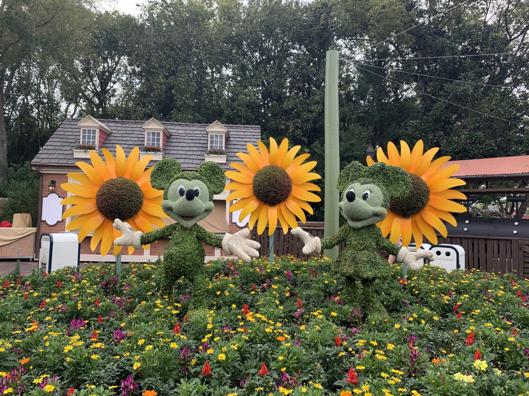 Mickey and Minnie topiaries at the Epcot Flower and Garden Festival