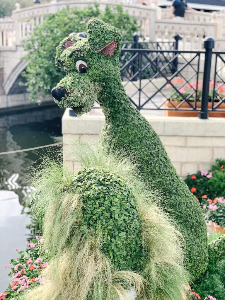Tramp looking at Lady in the Epcot Flower and Garden Festival topiary
