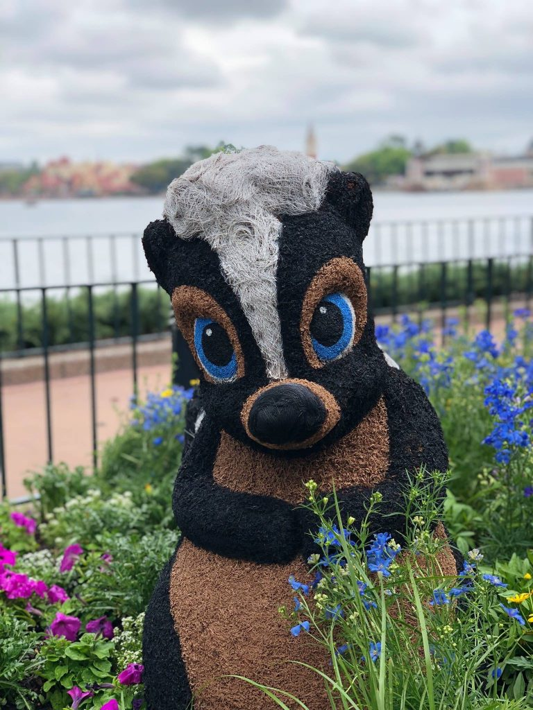 Flower at the 2019 Epcot Flower and Garden Festival