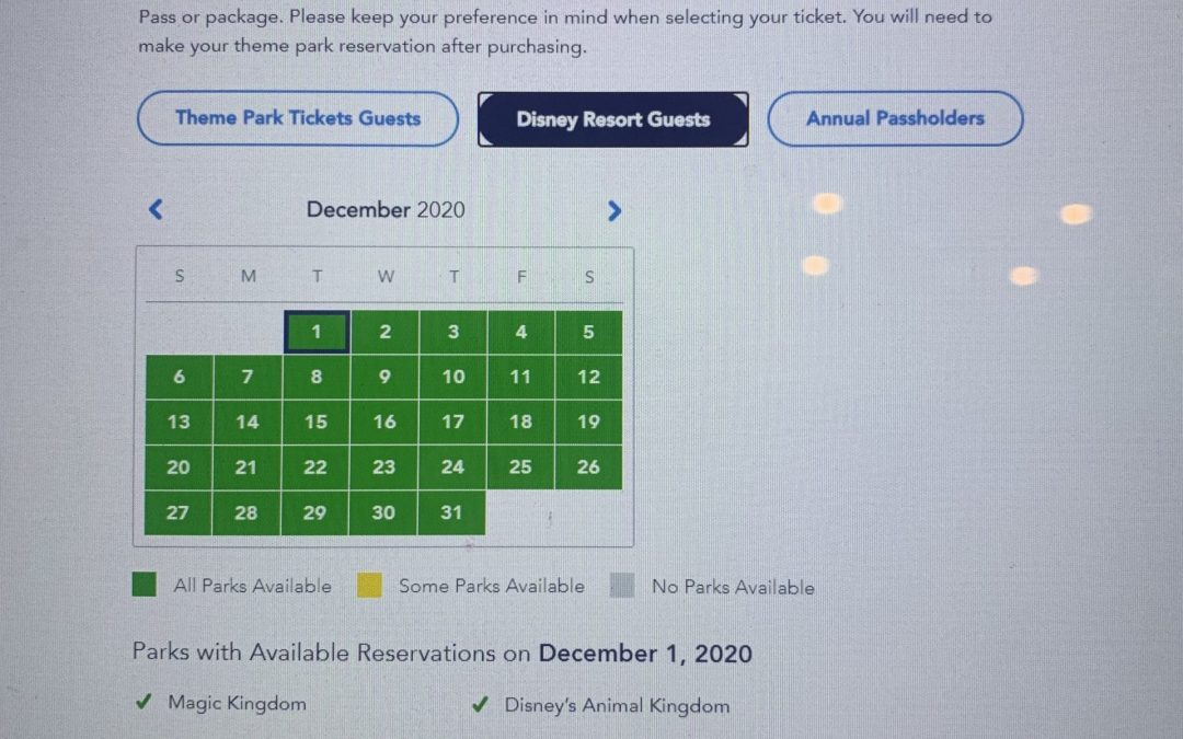 What You Need to Know to Make a Disney Park Pass Reservation