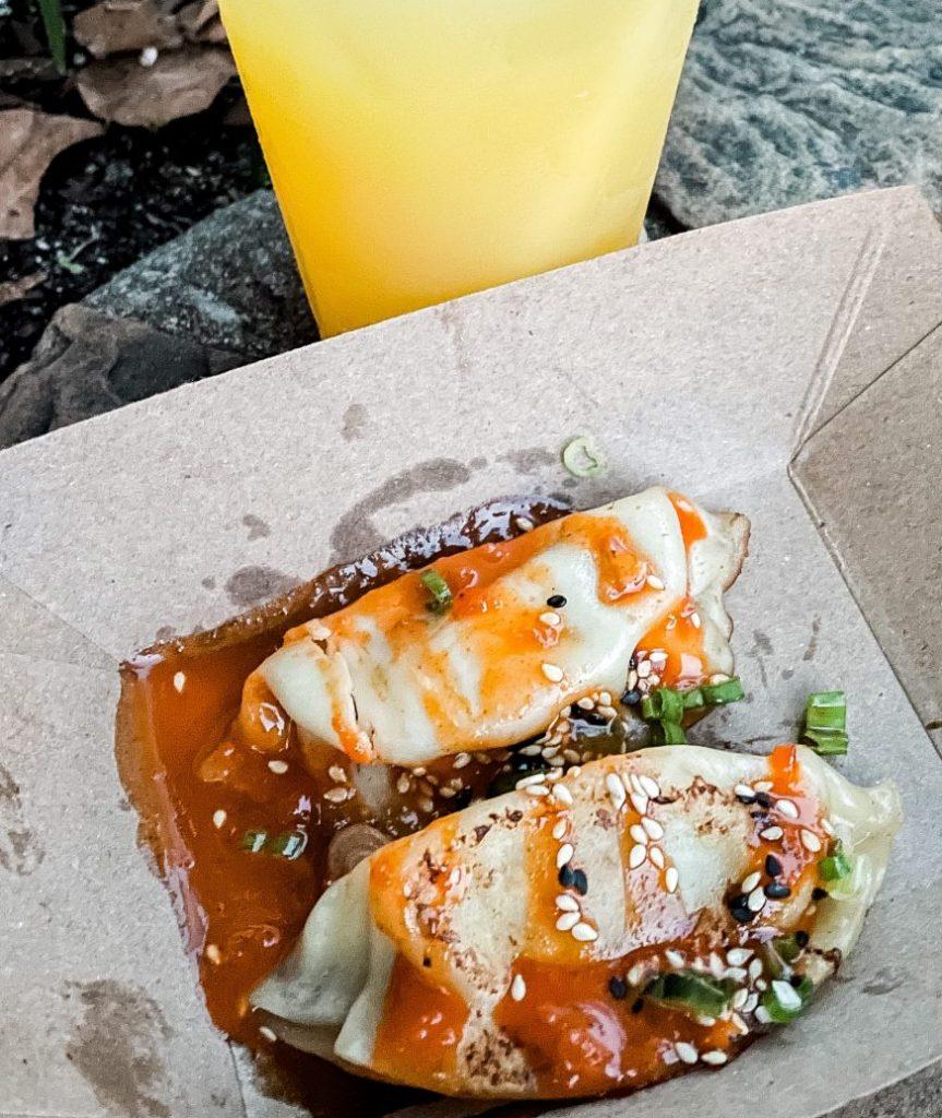 Pan-fried Chicken Dumplings Epcot International Food & Wine Festival